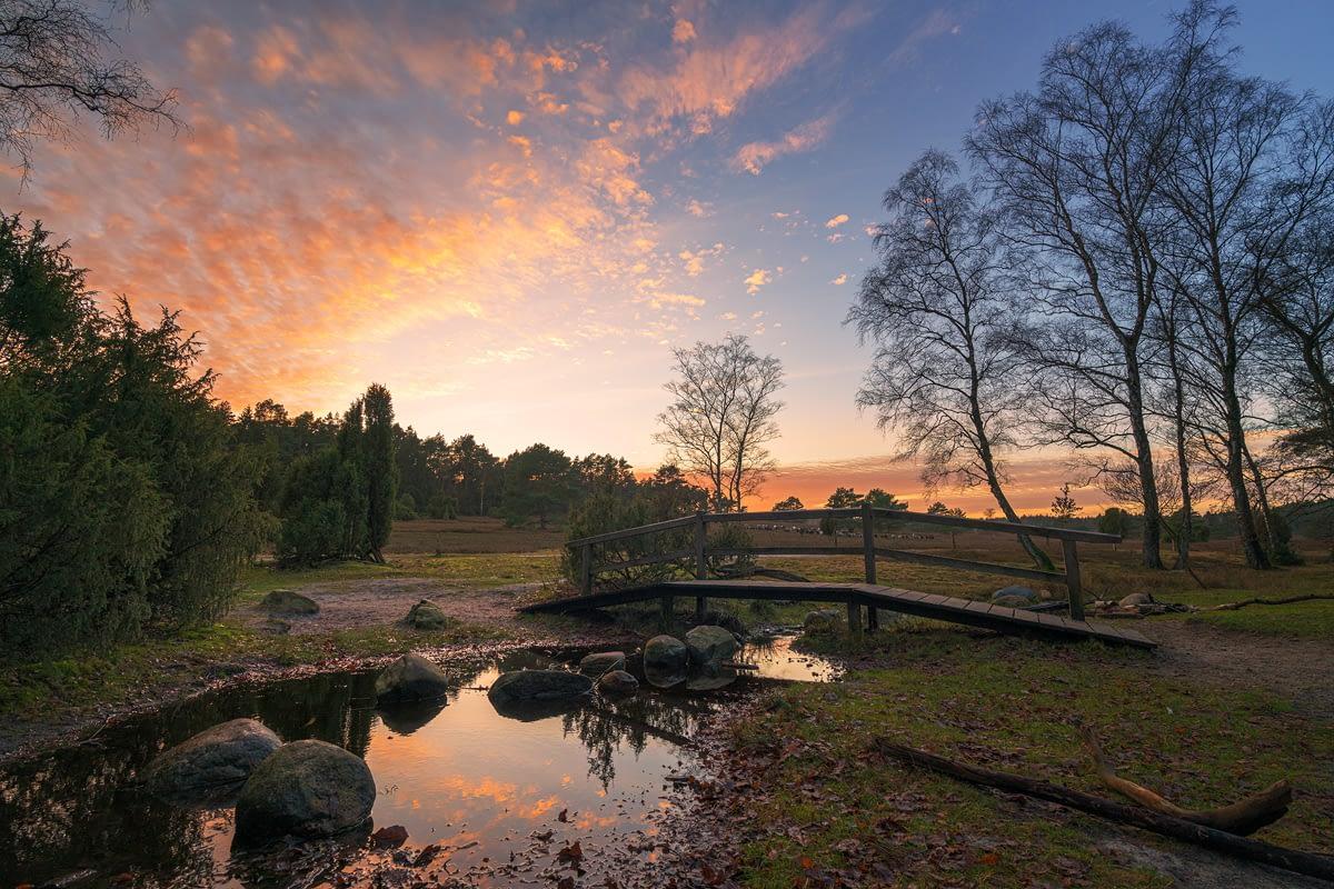 Büsenbachtal zum Sonnenuntergang