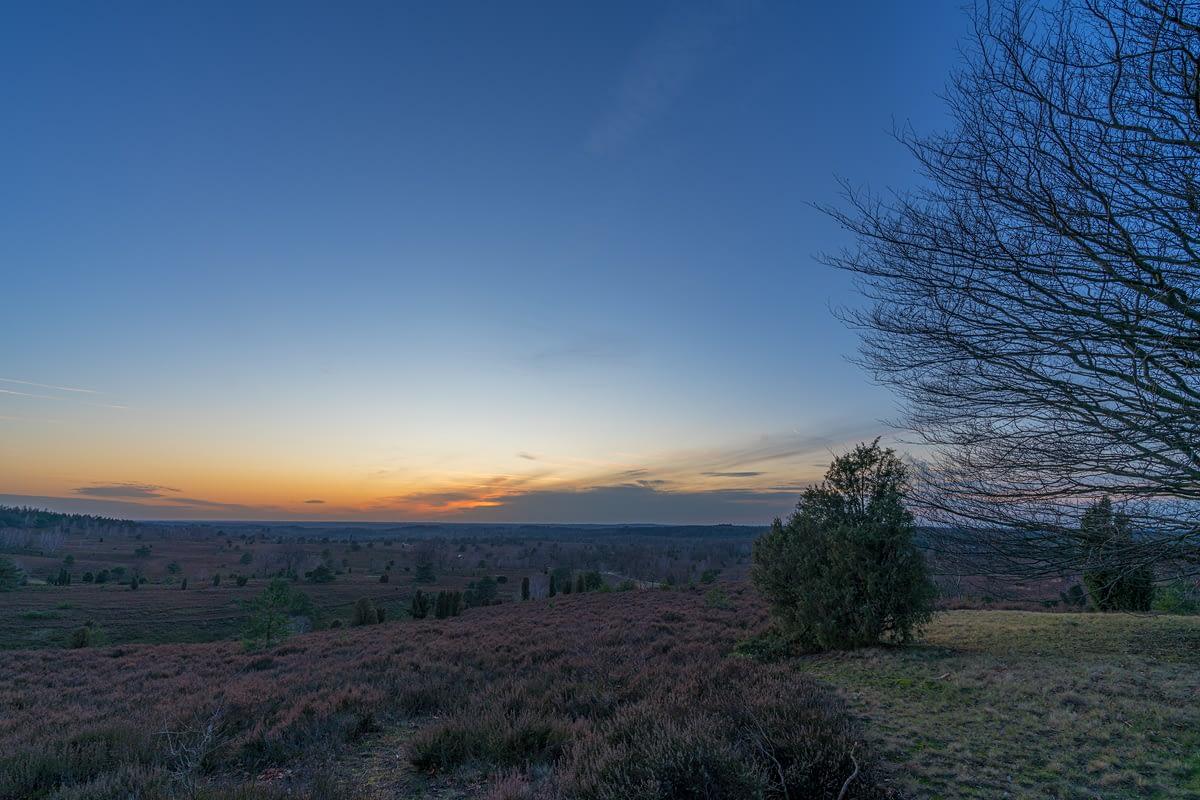 Blick vom Wilseder Berg auf die Lüneburger Heide zum Sonnenuntergang