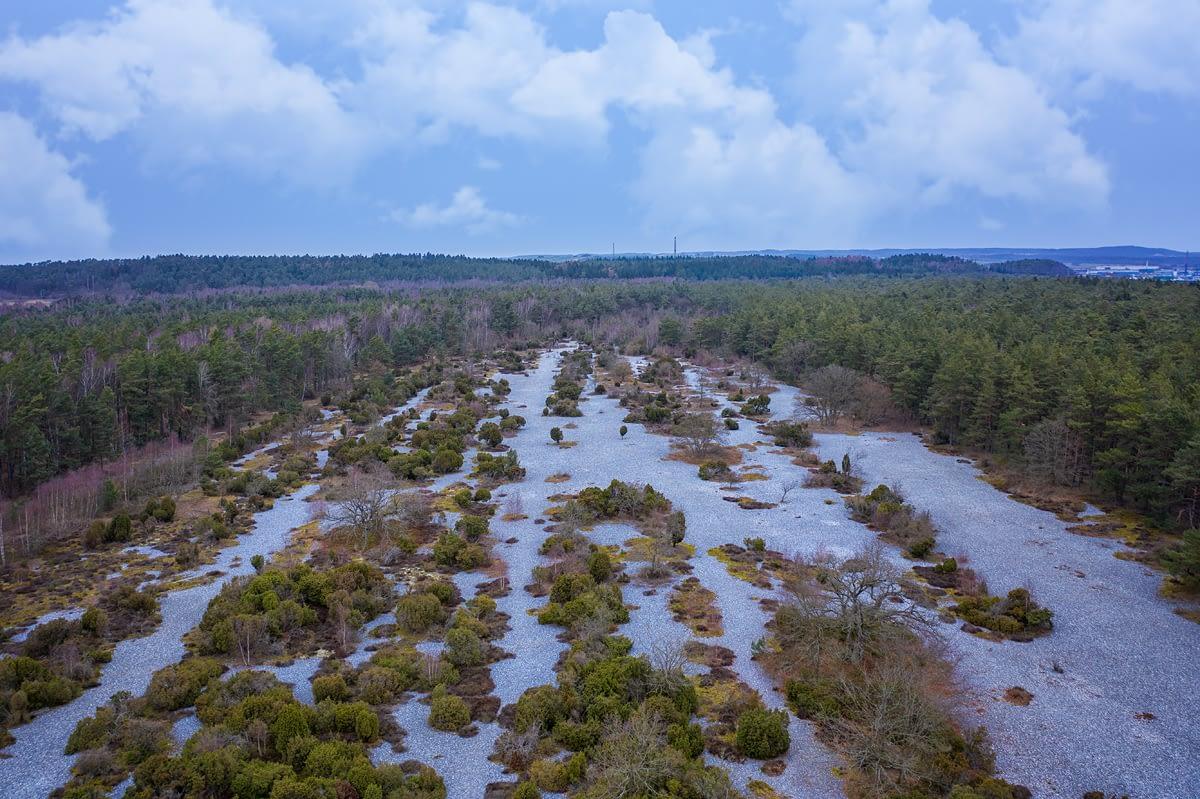 Feuersteinfelder in der Schmalen Heide Naturschutzgebiet steinernes Meer
