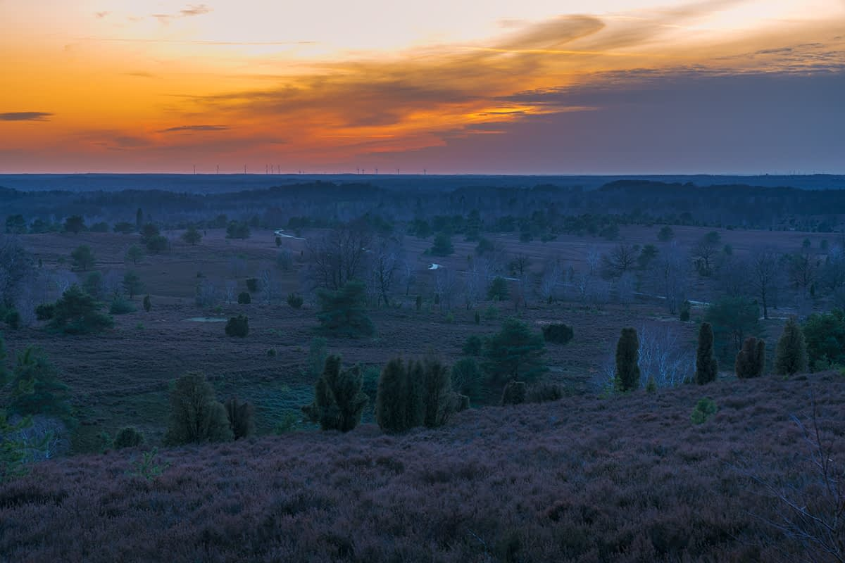 Wilseder Berg zum Sonnenuntergang